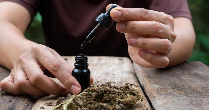 Cannabis Oil a Cancer Treatment